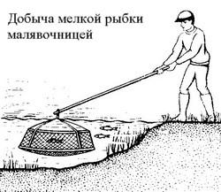 чем ловят рыбу совок