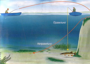 эхолот показывает рыбу где ее нет